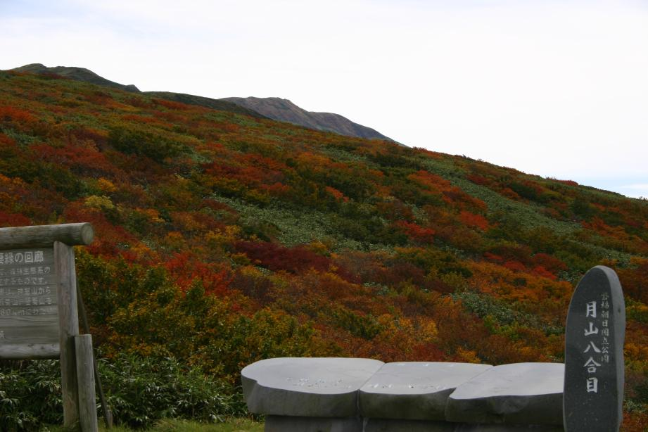 紅葉の月山8合目
